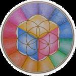 logo Fondation Omraam Onlus