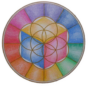 logo Omraam Onlus Foundation